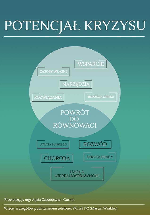 Potencjał kryzysu - Balans.edu.pl